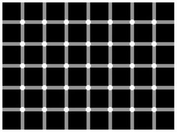Сколько черных точек вы насчитали
